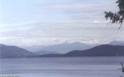 Photo for 30 Bartoo Island