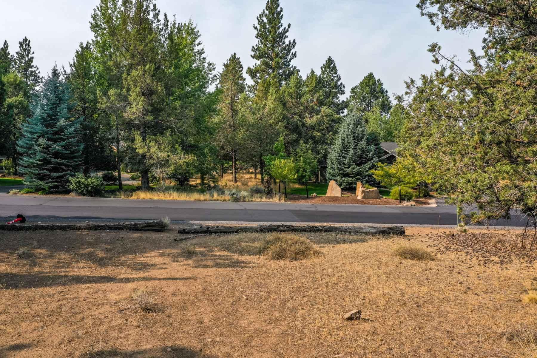 Photo for 16823 Royal Coachman Drive