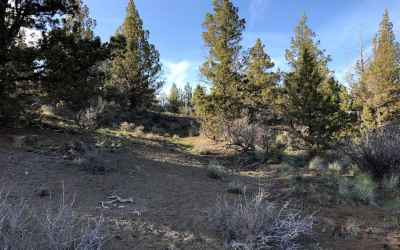Photo for20741 SE Eagle View Road