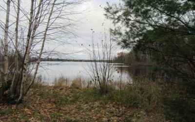 Photo for ON CIRCLE LILY RD W Lot 3