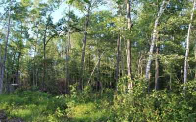 Photo for 3 Ac. CLEAR LAKE RD
