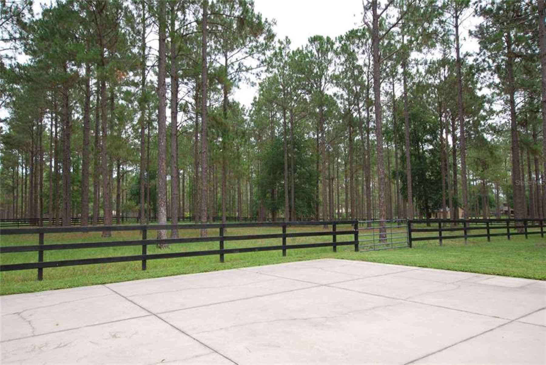 Photo for 35324 PINEGATE TRAIL