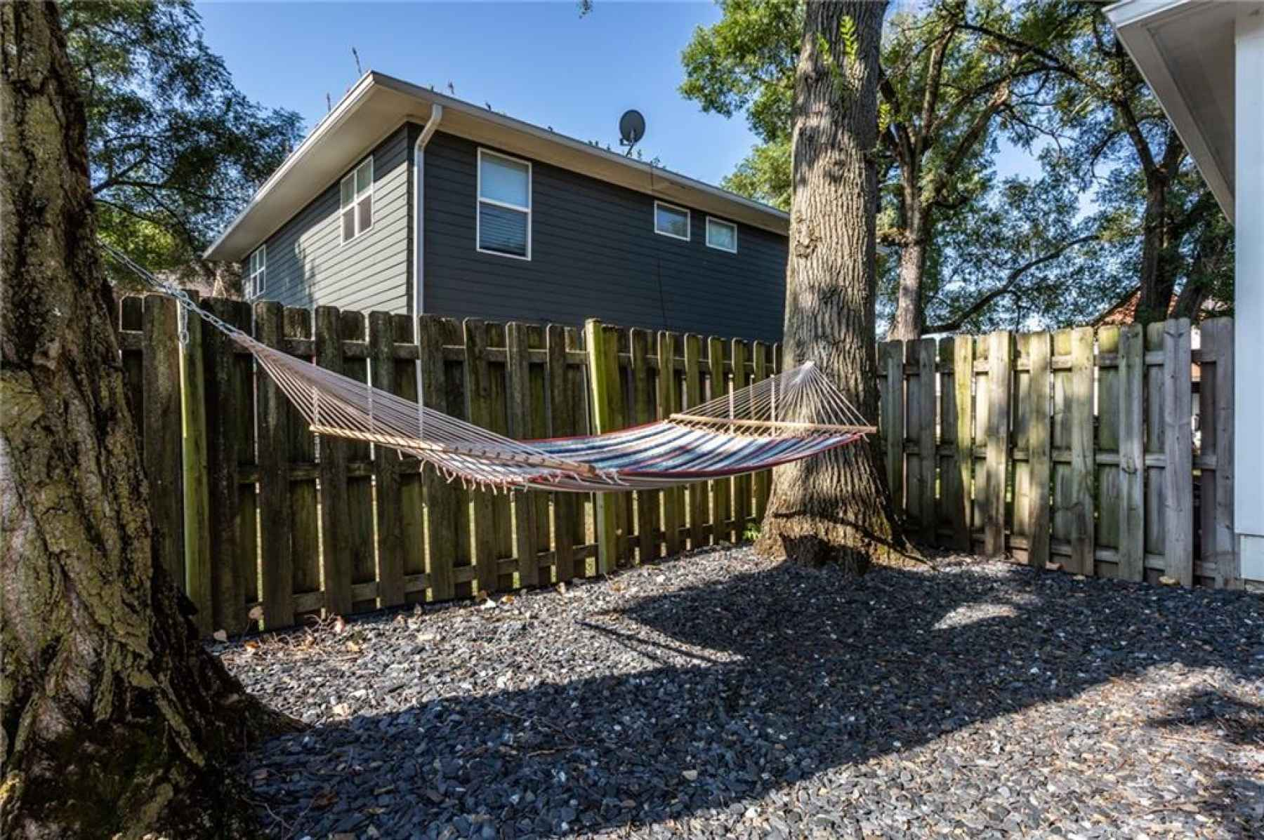Backyard hammock area.