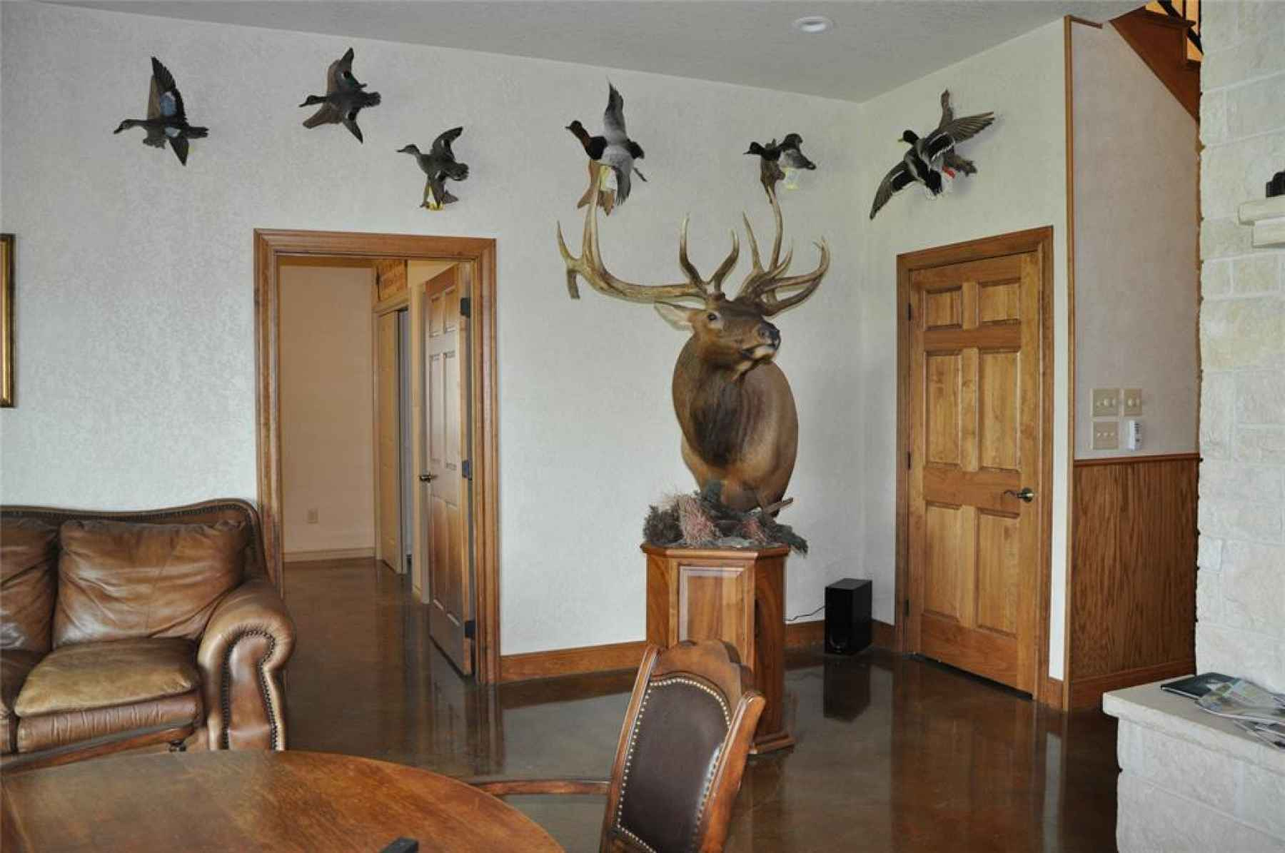 Photo for6159 County Road 371