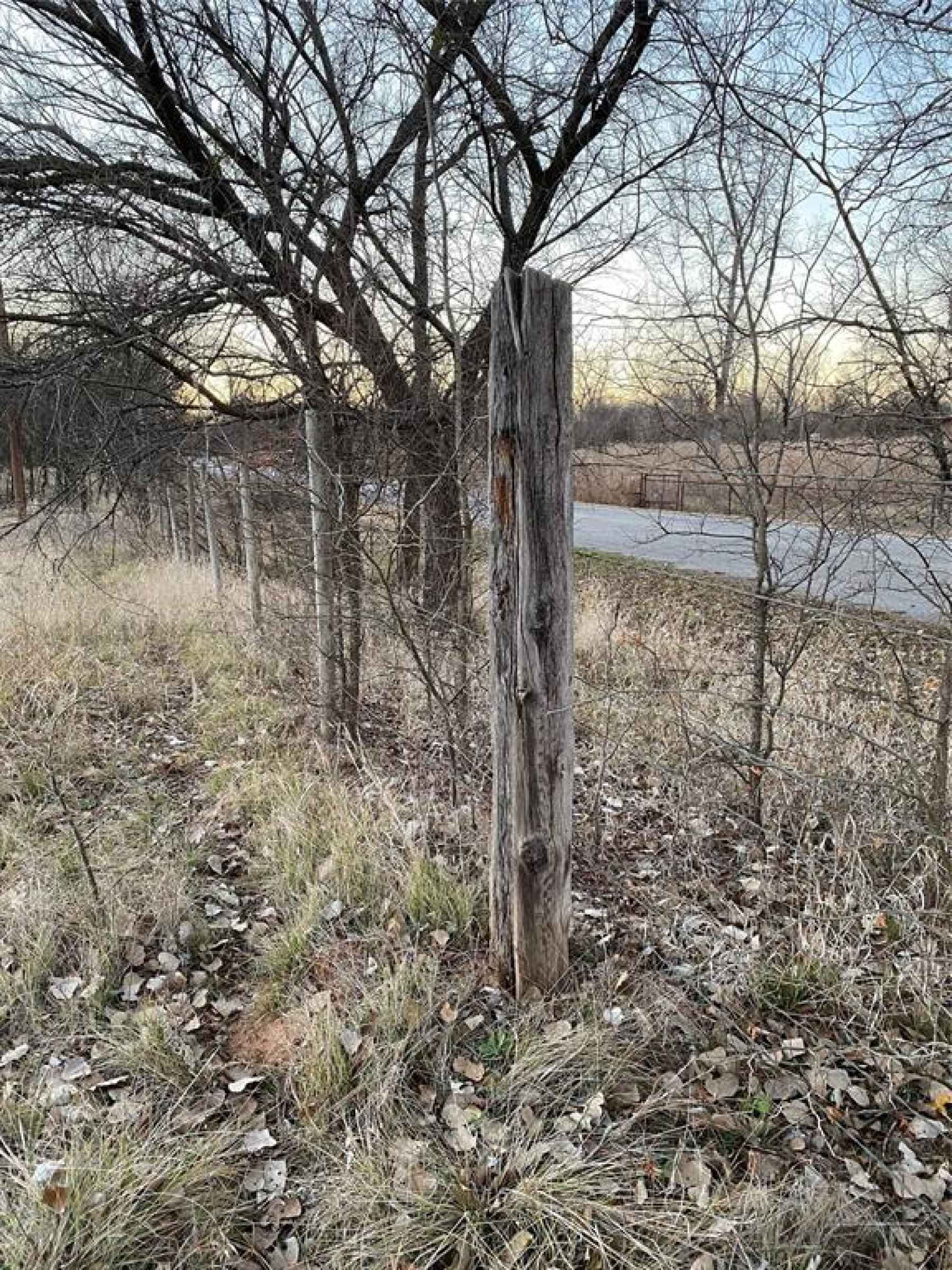 Photo for243 Iroquois Trail