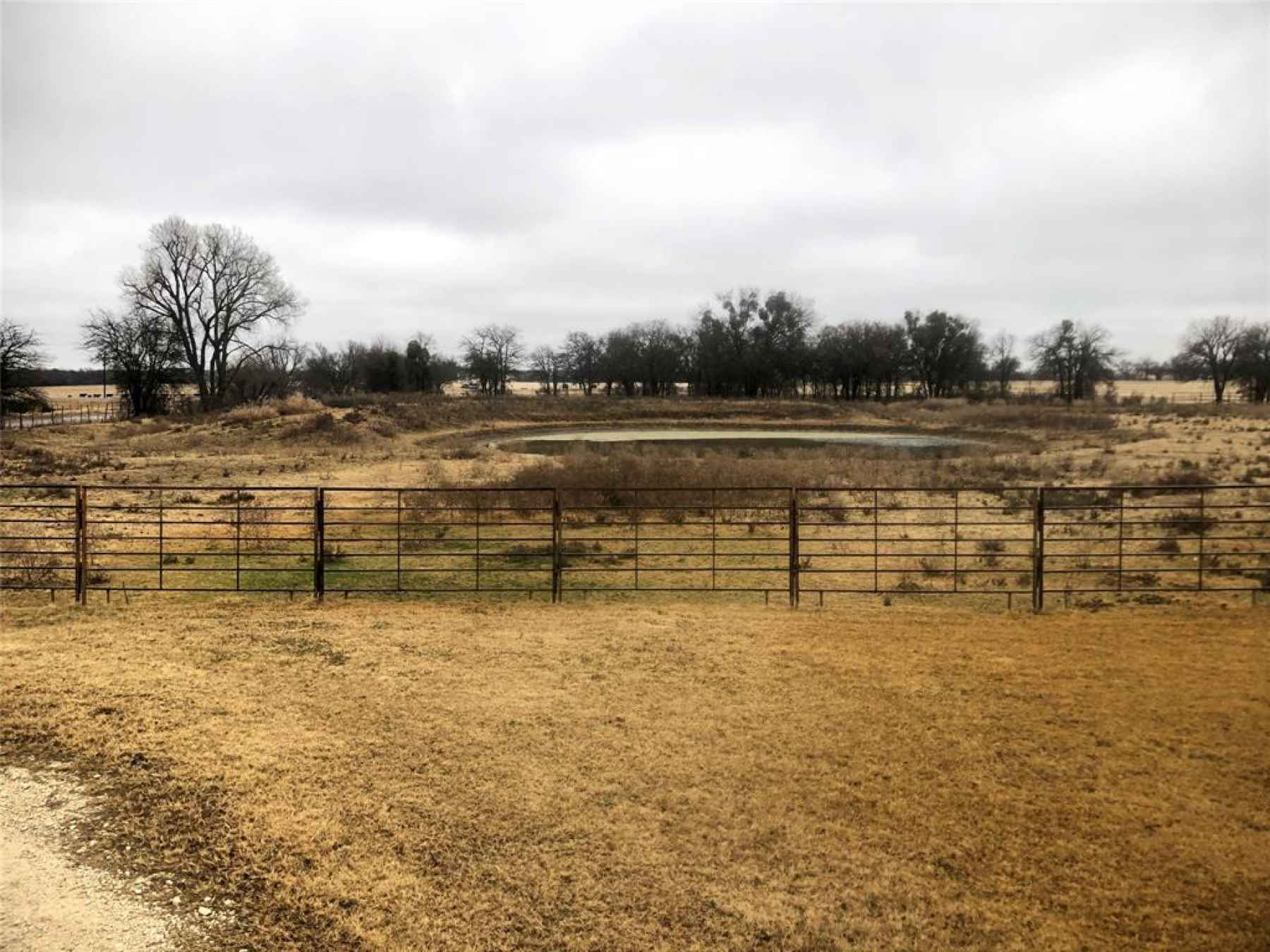 Photo for 315 County Road 423
