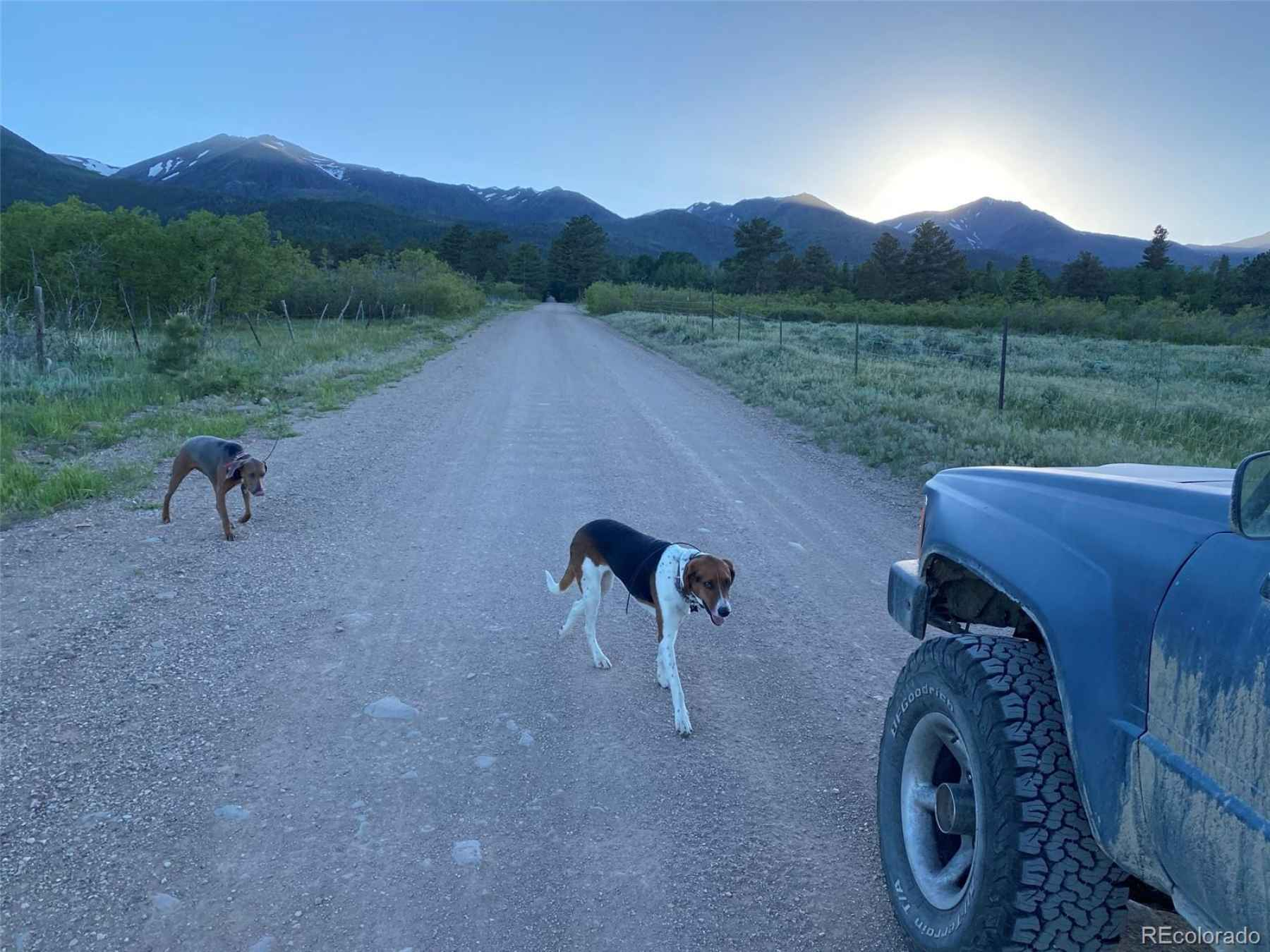 Photo for 107 Columbine Drive