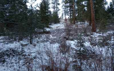 Photo for Lot 26 W Canyon Springs Way