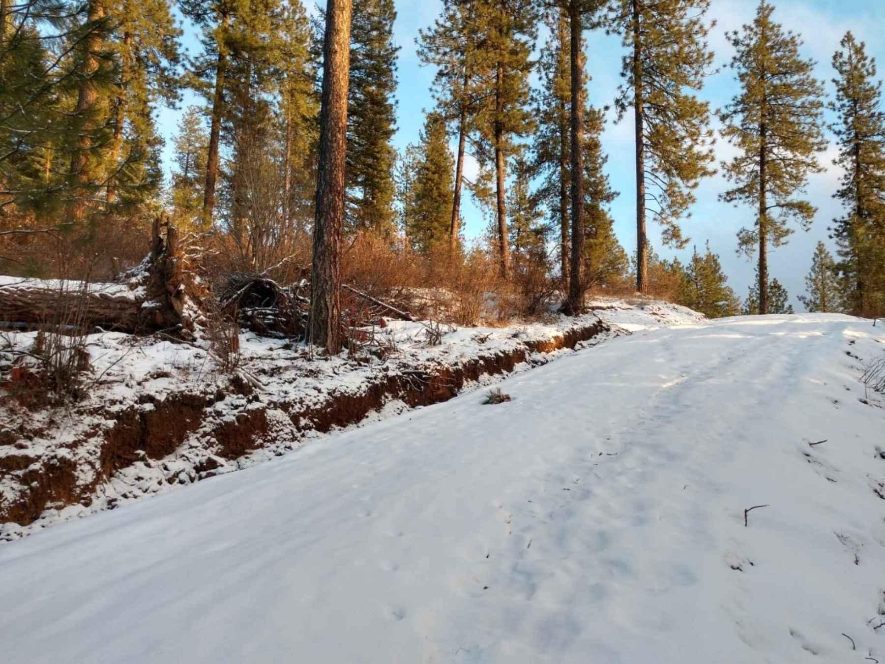 Photo for Lot 35 E Canyon Springs Way