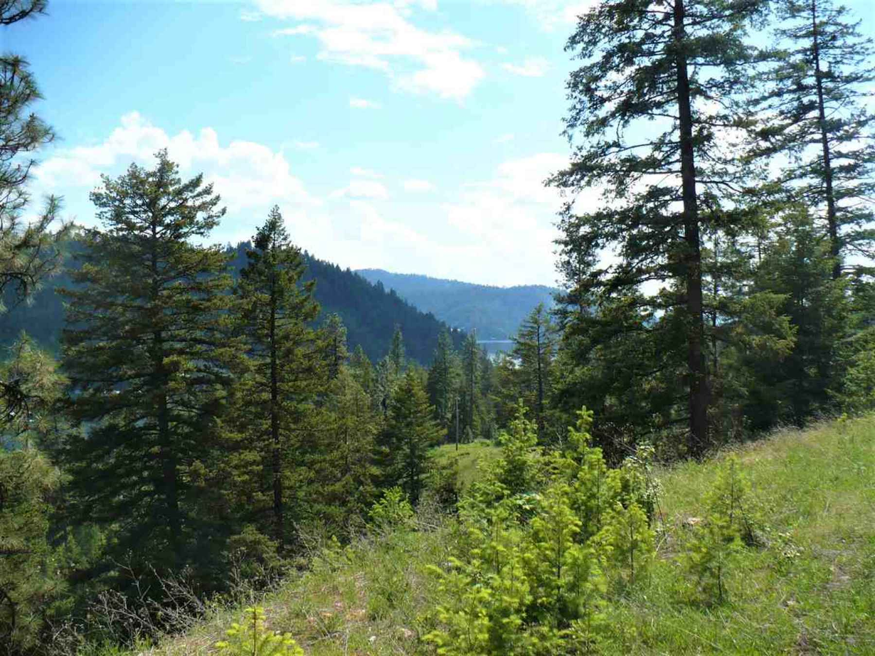 Photo for 4139 N Deer Lake Rd