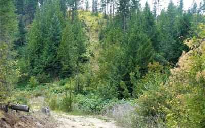 Photo for 4450 Buck Creek Rd