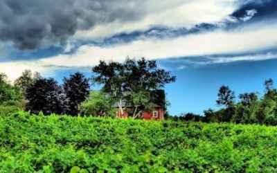 Photo for4 Appletree Lane